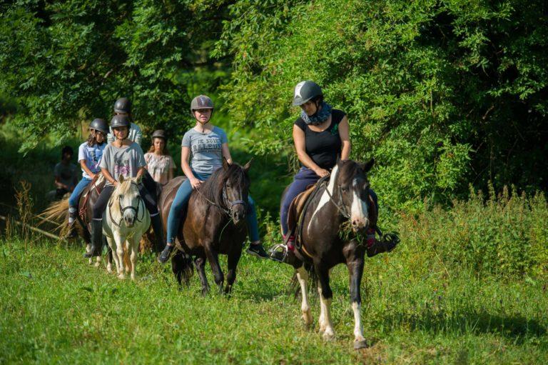 balade poney ; centre de vacances ; ferme pédagogique; colonie de vacances ; Tarn ; Occitanie