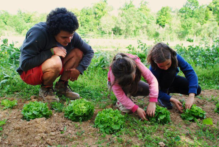 découverte du maraichage et du jardin