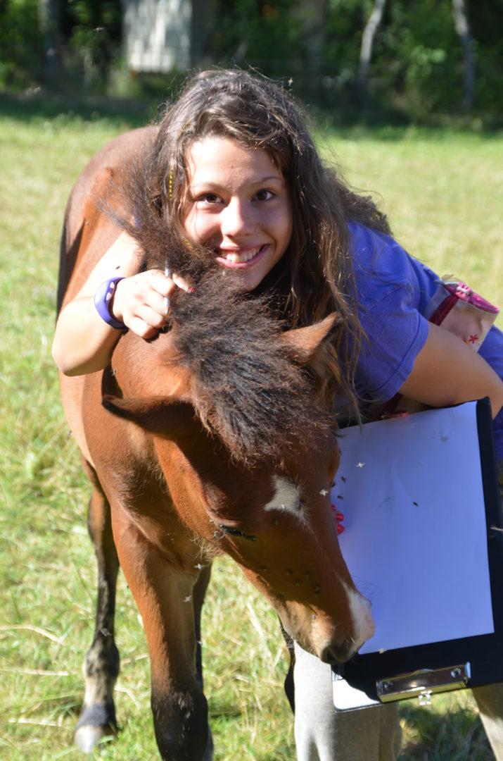 rencontre animal ferme pédagogique colonies de vacances